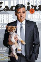 magazine-cover-design (44)