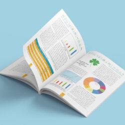 نمونه کار طراحی گزارش عملکرد شرکت بیمه ایران معین