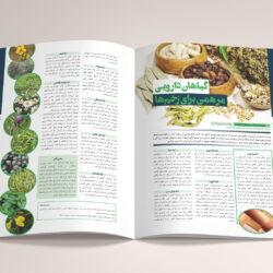 نمونه کار صفحه بندی مجله با موضوع پزشکی و داروسازی